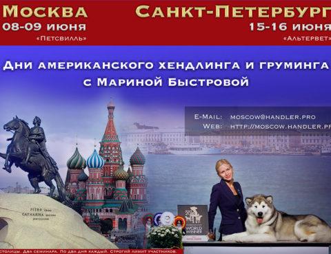 Мастер класс по хендлингу Марины Быстровой