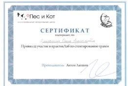 Сертификат Алексашина Ольга Анатольевна