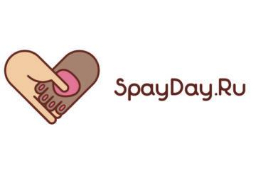 SpayDay