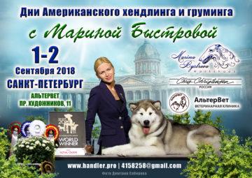 Семинар Марины Быстровой по американскому хендлингу