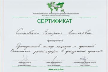 Сертификат Слижевская Екатерина Николаевна